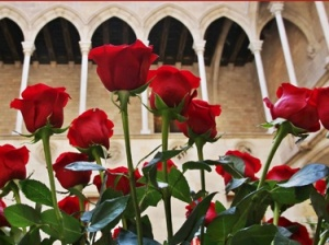 The rose market on April 23rd at the palau de la generalitat, the Catalan Parliament
